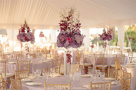 Wedding Decor Packages All Inclusive