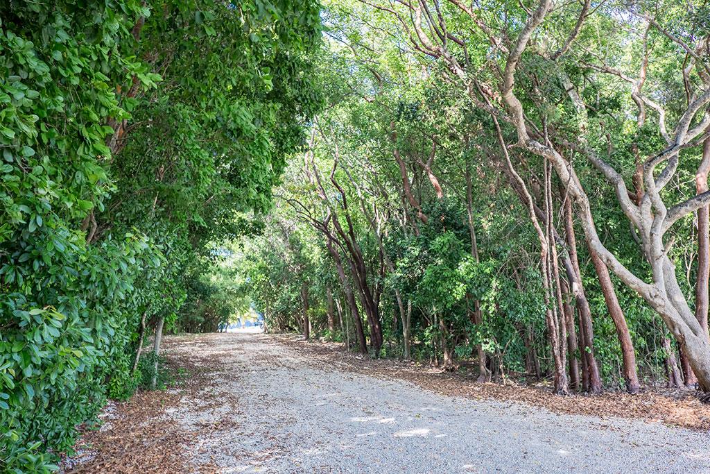 best wedding locations in Florida Keys