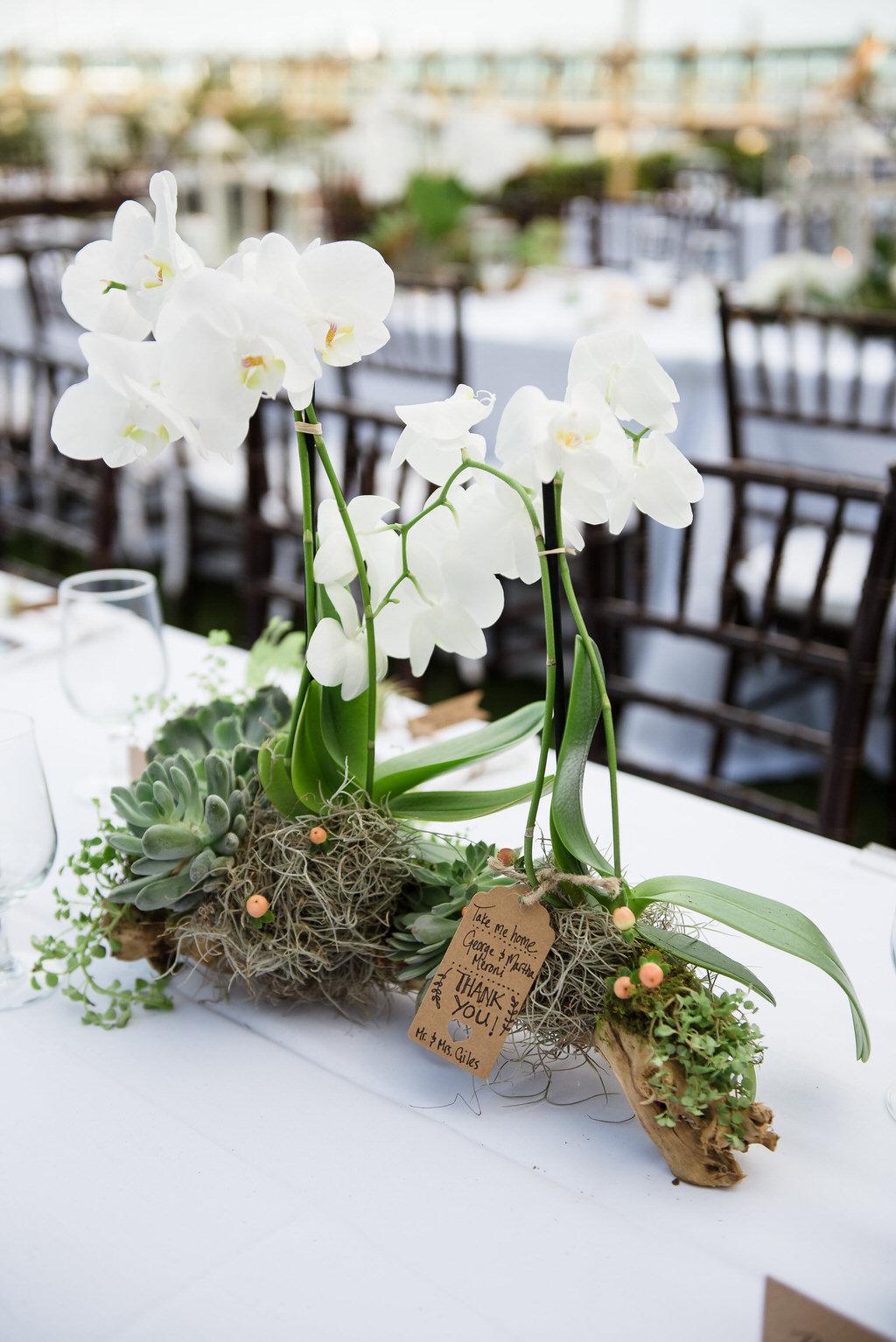 Wedding planner wedding packages in Florida Keys